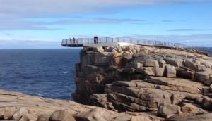 印度男澳洲風景區危險自拍 墜崖遭海浪捲走身亡