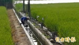 老天快下雨啊!一期稻作要灌溉 老農舀剩水讓人心疼