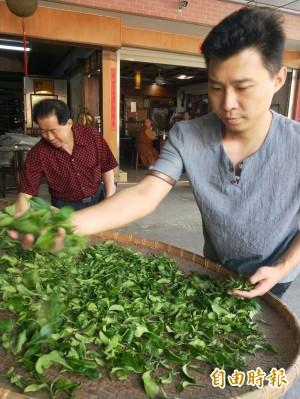 青農主打自然野放山茶 劉士輔奪「食品界米其林」2星獎