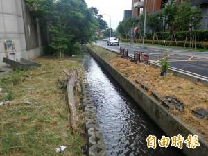 青埔灌溉渠染褐發臭 環保局:現場檢測都合格