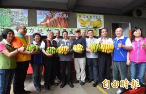 高志明籲政府大量收購冷凍 解決蕉價暴跌問題