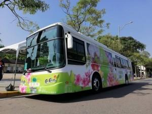 鼓勵汰換電動公車 交通部增列補助項目