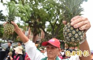 不滿價格大崩盤 中南部4縣市農民政院前砸鳳梨抗議