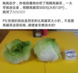 買2顆高麗菜500元 網友PO文「哭了」