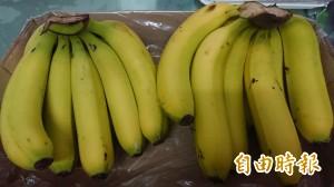 學者籲政府推「水果折價券」 讓遊客觀光順便買水果