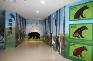 黑熊展區挨轟「粗製濫造」 玉管處坦承沒諮詢專家