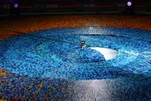59.6萬骨牌挑戰金氏紀錄 敗在一隻蒼蠅的無影腳...