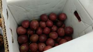 北市抽驗蔬果農藥14件不合格 北農、頂好超市上榜