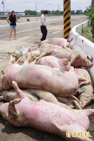 農損已逾2億元 嘉南高屏4縣市公告辦理現金救助