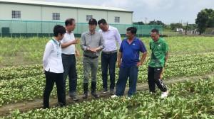 陳其邁馬不停蹄巡視災區 爭取補助減少農民損失