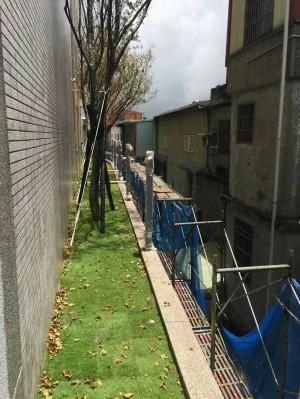 建商私栽樹木 鄰近住戶怨落葉掃不完