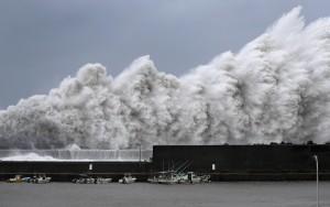 燕子登陸日本飆破多地風速紀錄 學校、商場停班停課
