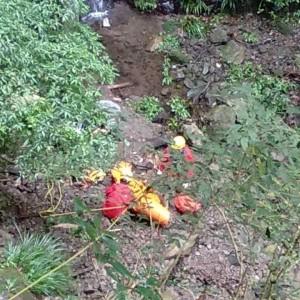 神救援!山友墜落100公尺深山谷 搶救成功