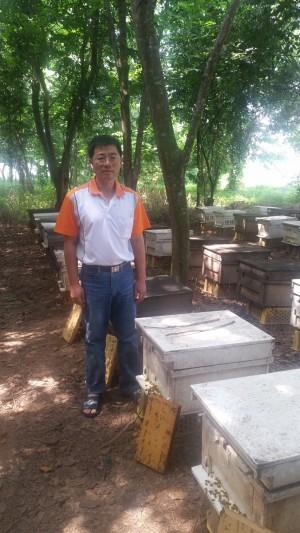 蜂農鄭金崑逐花草而居  開創養蜂事業