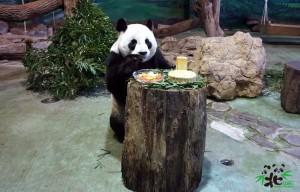 北市動物園提供「中秋餐」 要讓動物一起過佳節