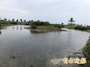 生態浩劫!道路拓寬封斷水路 林園濕地公園人工湖乾涸