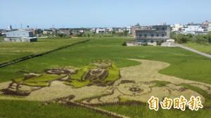 「唐三藏與豬八戒」現身苑裡 稻田彩繪好療癒