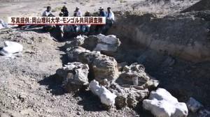 蒙古現超大恐龍化石!大腿骨1.5公尺、比暴龍還大...