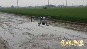 省工省時不用「農業千歲團」 無人機「直播種稻」