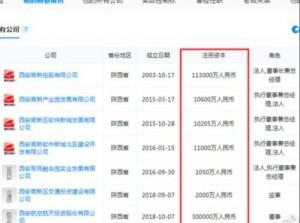 中國嫩董掌千億企業 被爆原因是官場鬥爭清洗後被抓上位…
