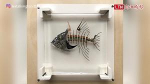 用電子零件做化石 網友驚呼:好像科幻電影游出來的魚!