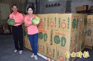 開放臉書預購 關廟區農會2天助賣3.4噸雲林高麗菜