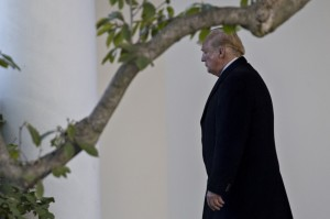 川普真的跟沙烏地「勾勾纏」?美國會將啟動調查