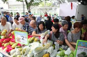 東西早就賣出去了!高雄今年蔬果外銷成長32%