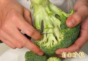 青花菜被傳10元價崩?網友:若因此被唱衰才是血本無歸