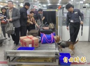 中國旅客增加 今年金門小三通人次可望創新高