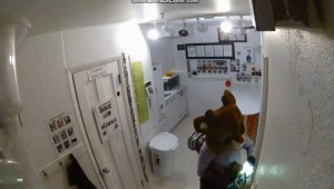 小偷也在過耶誕!穿上馴鹿玩偶裝入店行竊...
