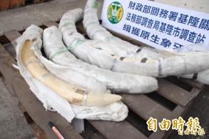 闖關4根共重117公斤象牙法院採信「裝飾品」判無罪