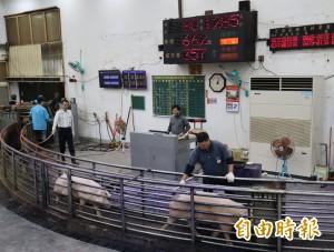 台中市肉品市場傳將遷至大安區 民代堅決反對