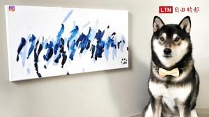 請叫牠犬界「畢卡索」 這隻柴柴的畫作已賣出上百幅!