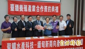 水產養殖進軍新南向 台灣鯛魚苗外銷緬甸