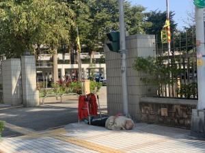 狂!抗議司法不公 8旬翁從台中騎到苗栗地院外「靜躺」