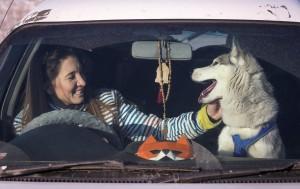 伊朗首都加強「反狗行動」 禁止溜狗、載狗開車兜風