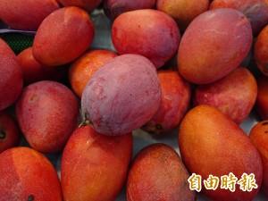中央推食物銀行 黃偉哲舉雙手支持:台南全力合作