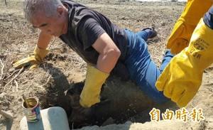 5幼犬受困1.5米地洞 動保團體鑿洞鑽地救援