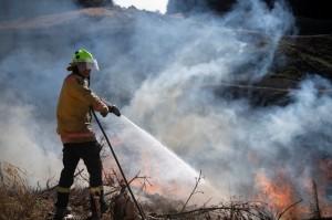 紐西蘭罕見野火延燒一週 3000人被迫撤離家園