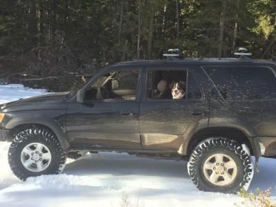 被雪困車內5天5夜 他和狗狗靠舔這個活下來...