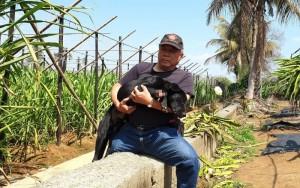 來回300公里長征救狗 從高雄遠赴南投竹山救2流浪犬