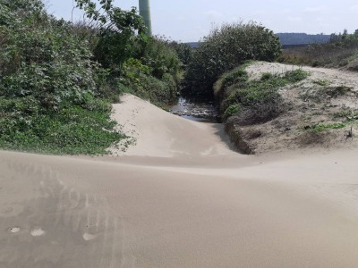 風吹沙堵塞通霄五南里溝渠 農民叫苦:大雨倒灌農田