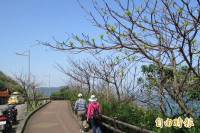 基隆外木山增設自行車道 串接大台北