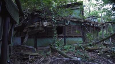 迪士尼竟藏荒廢20年 「鬼島」!廢墟屍骨超駭人