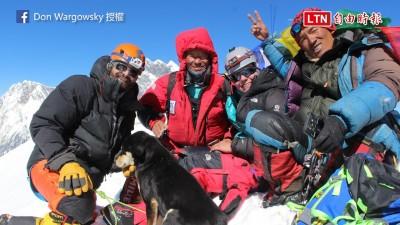 登上海拔7000公尺的奇蹟浪浪! 登山嚮導撰文自述相遇過程