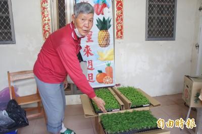 發揮所學 衛生署官員黃鏵退隱離島 教學生、免費贈送種子