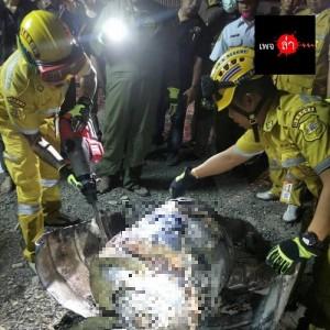 泰國驚傳水泥封屍!男子疑慘死200公升大油桶內