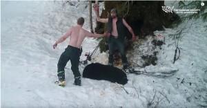盜獵慘劇!2幼熊見媽媽遭射殺放聲尖叫 仍遭一槍斃命