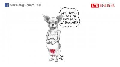 黑熊哭喊「把我的膽還來」 插畫家以動物視角訴說受虐處境